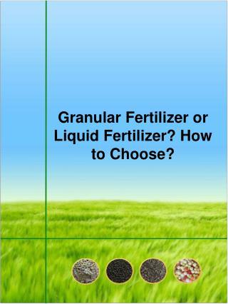 Granular Fertilizer or Liquid Fertilizer? How to Choose?