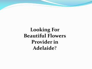Flowers in Adelaide