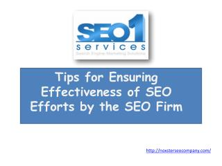 Tips for Ensuring Effectiveness of SEO Efforts by the SEO F