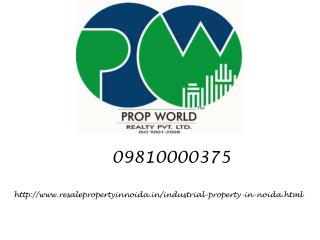 Industrial Property For Sale In Noida