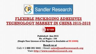 2019 China Flexible Packaging Adhesives Technology Market Gr