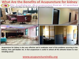 What Are the Benefits of Acupuncture for kidney