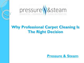 Why Professional Carpet Cleaning Is The Right Decision