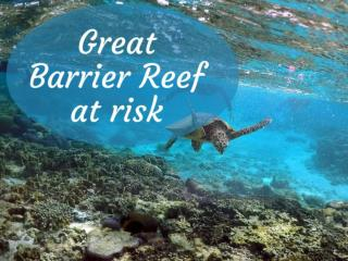 Great Barrier Reef at risk