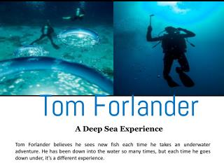 Tom Forlander