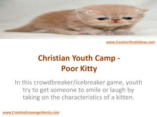 Christian Youth Camp - Poor Kitty