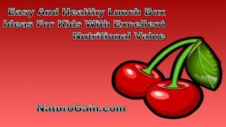 Easy And Healthy Lunch Box Ideas For Kids With Excellent Nut