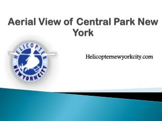 Aerial View of Central Park New York