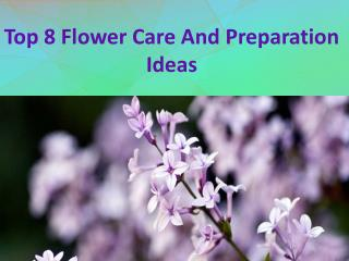 Top 8 Flower Care And Preparation Ideas