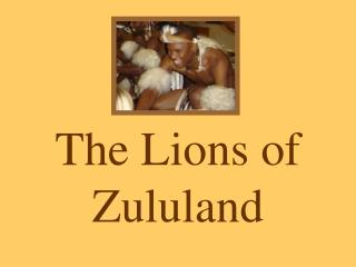 The Lions of Zululand