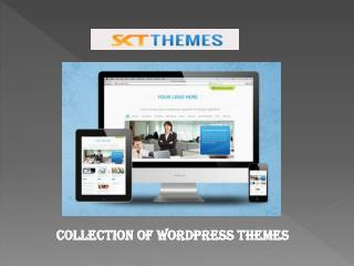 Clean Designed Free WordPress Themes That Look Modern