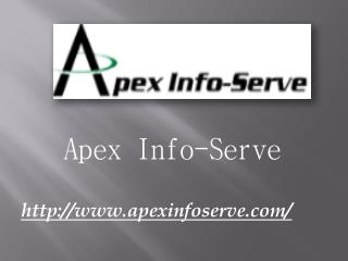 Website Marketing Agency - Apex Info-Serve