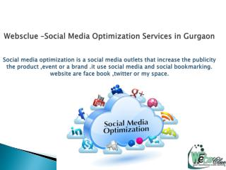 Websclue providing best social media optimization services.