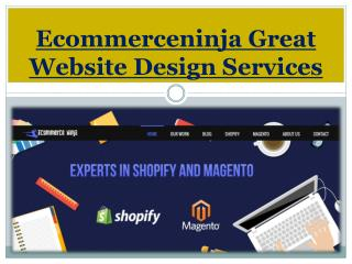 Ecommerceninja Great Website Design Services