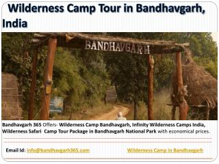 Wilderness Camp Tour in Bandhavgarh, India