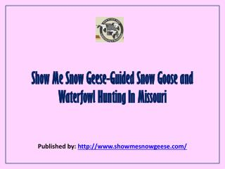 Show Me Snow Geese-Guided Snow Goose And Waterfowl Hunting In Missouri