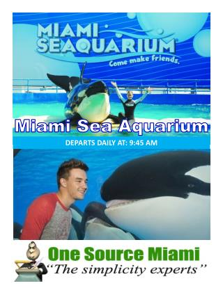 Miami sea aquarium