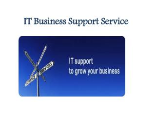 IT Business Support Service