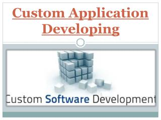 Custom Application Developing