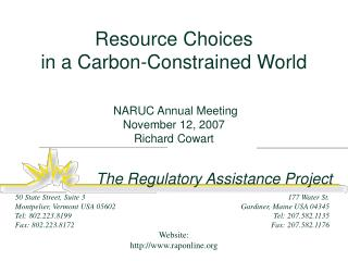 Resource Choices  in a Carbon-Constrained World