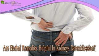 Are Herbal Remedies Helpful In Kidneys Detoxification?