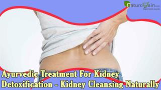 Ayurvedic Treatment For Kidney Detoxification - Kidney Cleansing Naturally