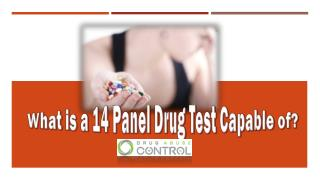 What is a 14 panel drug test capable of