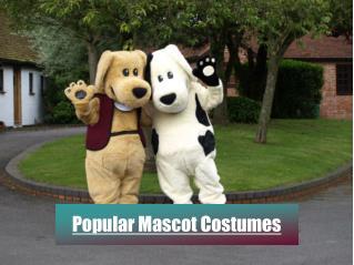 Popular mascot costumes