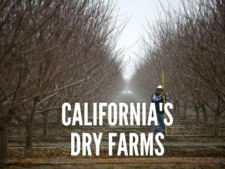 California's dry farms