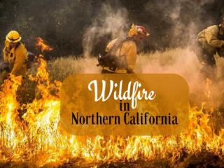 Wildfire in northern California