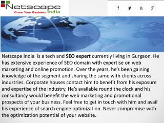 What are the services provided by a Netscape India