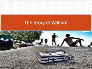 The Story of Wallum