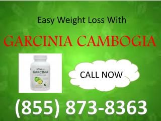 (855) 873-8363 Garcinia Cambogia-Tone Up Your Body and Lose