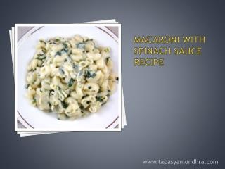 Macaroni with Spinach Sauce Recipe