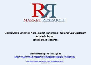 United Arab Emirates Nasr Project Panorama - Oil and Gas Upstream Analysis Report
