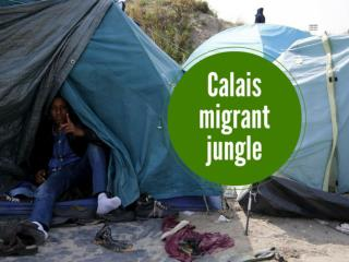 Calais migrant jungle