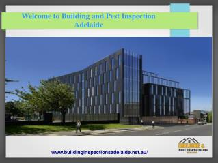 Adelaide Building And Pest Inspection