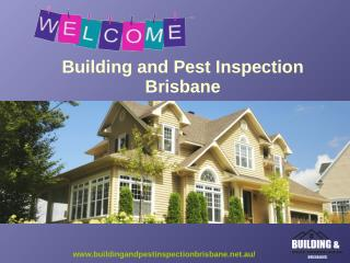 Building and Pest Inspection Brisbane