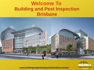 Best Building and Pest Inspection In Brisbane