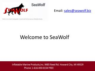 Inflatable boats   sea wolf