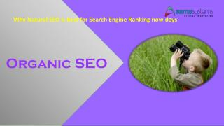 Why Natural SEO is best for Search Engine Ranking now days