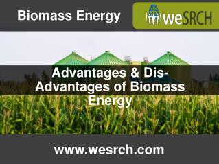 Advantages & Dis-Advantages of Biomass Energy