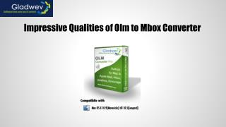 Impressive Qualities of Olm to Mbox Converter