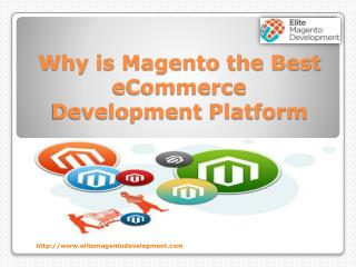 Why is Magento the Best Ecommerce Development Platform