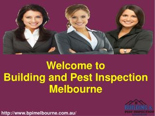 Best Building And Pest Inspection Services in Melbourne