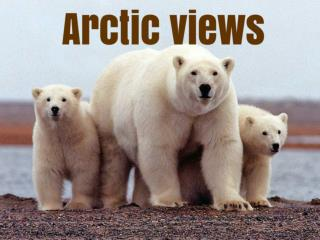 Arctic views
