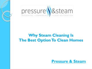 Why Steam Cleaning Is The Best Option To Clean Homes