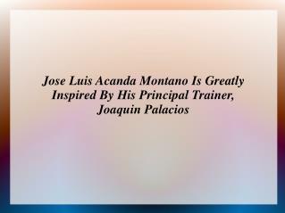 Jose Luis Acanda Montano