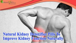 Natural Kidney Detoxifier Pills To Improve Kidney Function Naturally