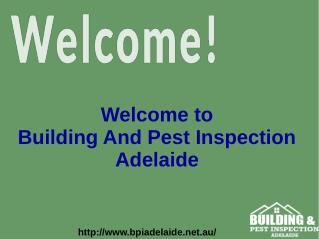 Adelaide Pest And Building Inspection